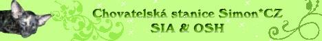 Simon*CZ - SIA & OSH